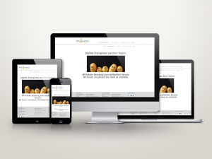 Web Solutions-responsive
